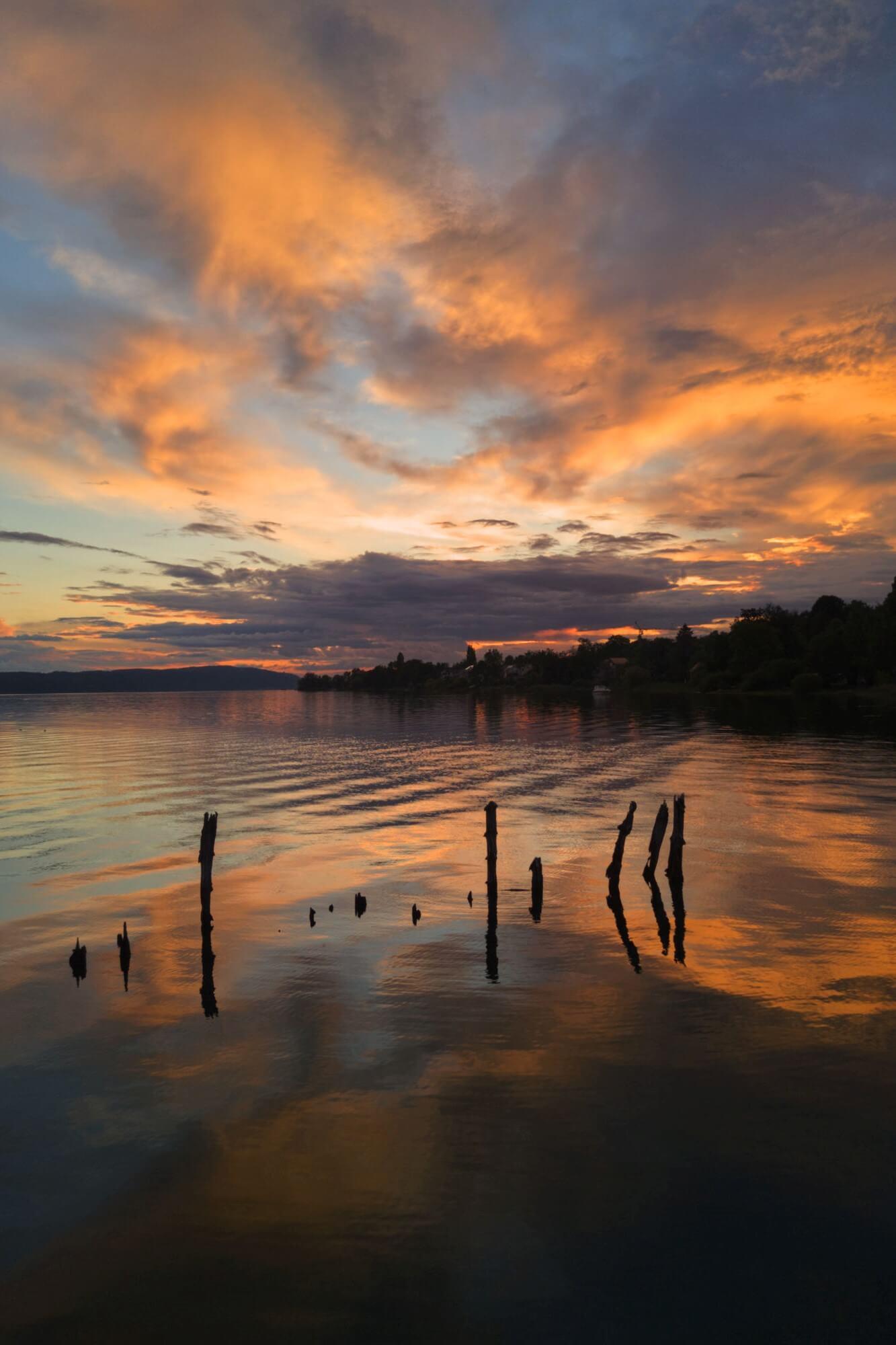 Pfähle im Bodensee bei Sonnenuntergang
